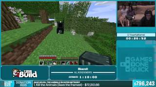 Minecraft by FearfulFerret in 1 14 34 - Summer Games Done Quick 2015 - Part 148