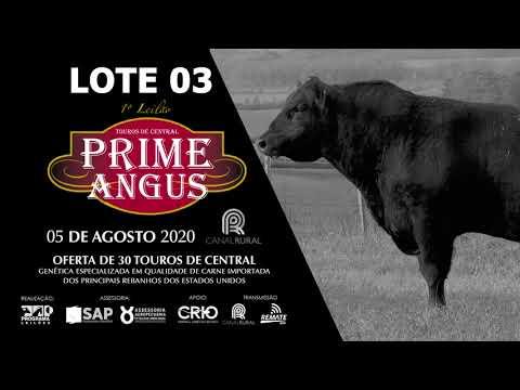 LOTE 03   BLACK OPAL TE870  BUTCHER Prod  Agência El Campo