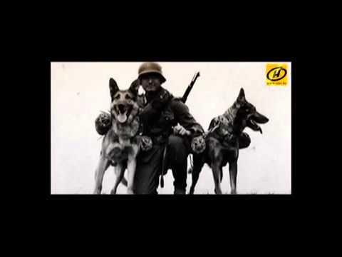 Джульбарс и Дина  Солдаты службы «Д»