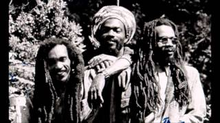 ISRAEL VIBRATION - Reggae On The River