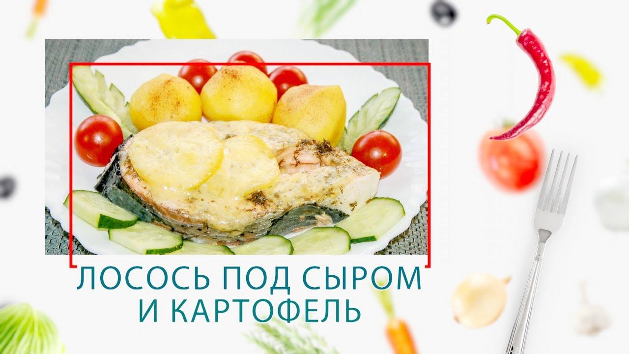 Лосось под сыром и картофель (2 в 1) в ARC–QDL-514D