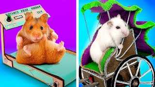 DIY Treadmill And Rickshaw For Your Hamster