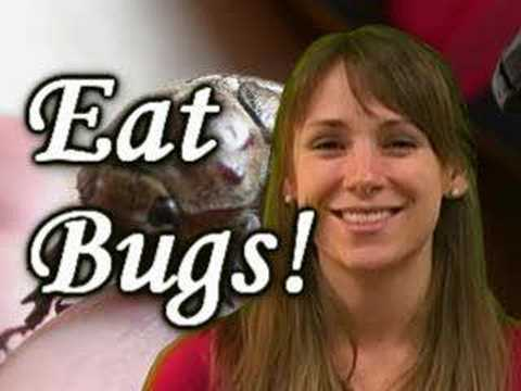 People Eating Bugs & Food W/ Insects, Nutrition By Natalie