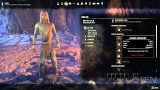 Elder Scrolls Online: Create the Best Character for Your Class