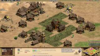 Aoe2: When to Make an Army & Other Military Tips