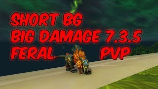 SHORT BG BIG DAMAGE - 7.3.5 Feral Druid PvP - WoW Legion