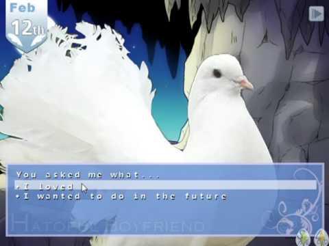 pigeons dating
