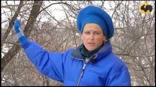 Борьба с весенним паводком. САД день за днем №22.(После рекордно снежной зимы наступает сильный паводок, и сегодня вы узнаете, как с ним бороться на своём..., 2013-04-30T22:05:46.000Z)