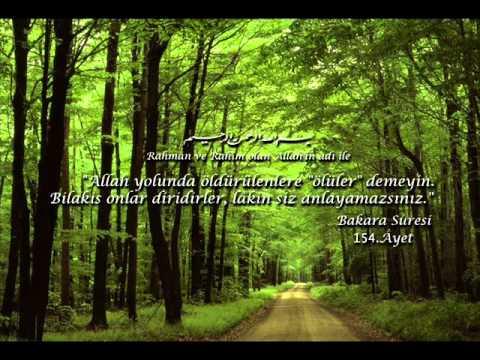 ŞEHİT TAHTINDA