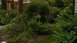видео Зеленая стрела ландшафтный дизайн сайт