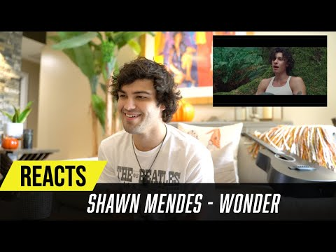 Producer Reacts to Shawn Mendes - Wonder