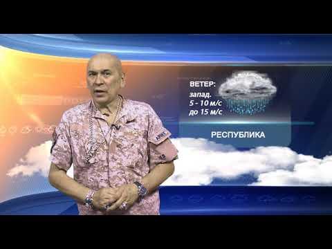 Прогноз погоды на 24.06.2019
