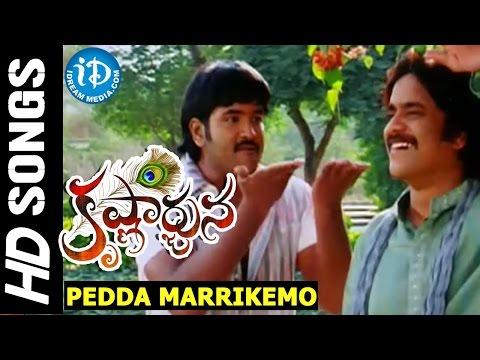 Krishnarjuna - Pedda Marrikemo video song || Nagarjuna || Vishnu || Mamta Mohandas