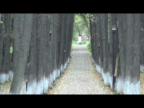 Парк Пушкина Лысьва