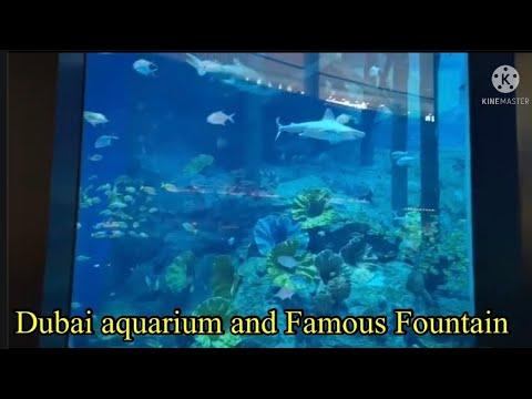 Dubai Aquarium and famous fountain @Olive Bain