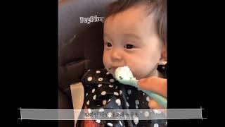 육아브이로그) 귀욤뽀짝 쏭둥이 이유식먹기 대작전