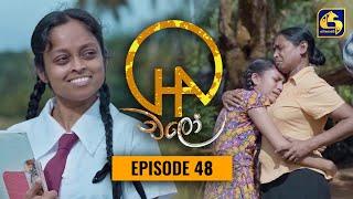 Chalo    Episode 48    චලෝ      16th September 2021 Thumbnail