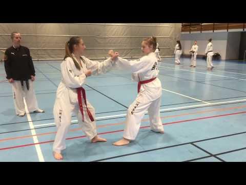 En hel dag med taekwondo