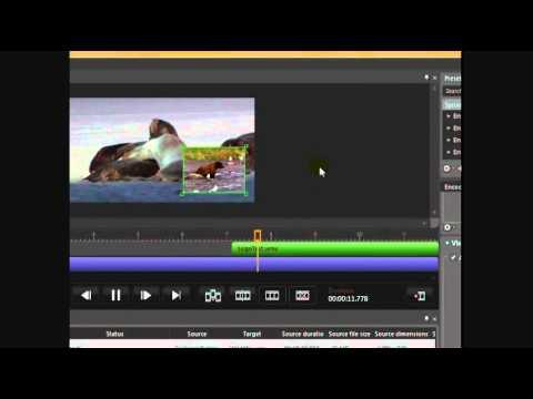 Expression Encoder Overlays