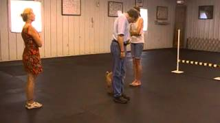 Novice Obedience Cdsp Trial At Blue Ridge Dtc July 1, 2012 Trial 2