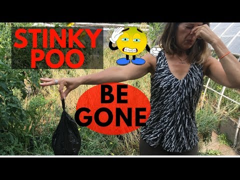 Does Your Dog Have Stinky Poo | How To Eliminate The Stink