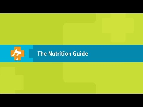 Better Nutrition Starts Here