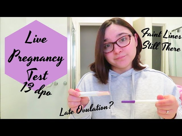 Live Pregnancy Test At 13 Dpo    Faint Lines Are Still There