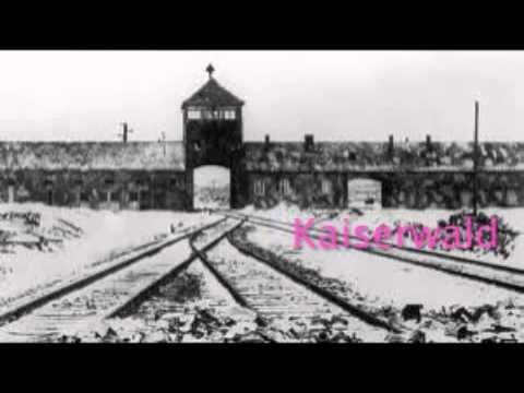 Sad Holocaust Violin