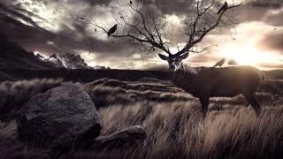 Axl Rosenberg - Into The Wild Chapter II [Pandora Version]