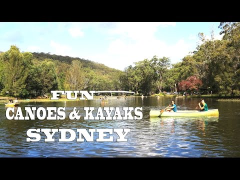 Things to do in Sydney - Royal National Park - Sydney Vlog 22