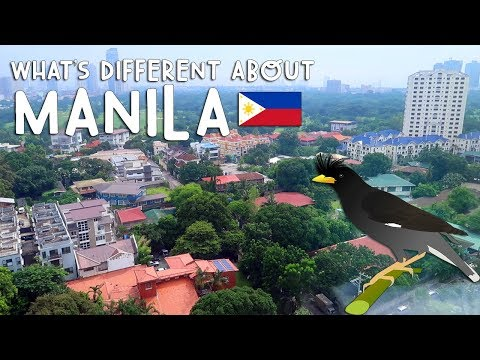 WHAT'S DIFFERENT ABOUT MANILA | Vlog #203