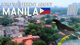 Video WHAT'S DIFFERENT ABOUT MANILA | Vlog #203 download MP3, 3GP, MP4, WEBM, AVI, FLV Agustus 2017