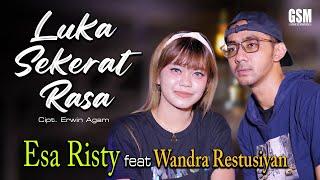 Luka Sekerat Rasa - Esa Risty feat Wandra Restusiyan I Official Music Video
