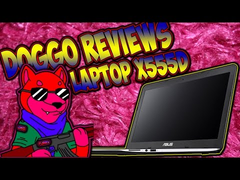 Asus X555D Laptop Review (Doggo Reviews #1, CoD WaW, Yay PC Stuff xD)