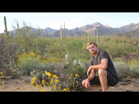 solo-survival--how-to-survive-alone-in-the-desert-(sonoran-desert)--part-one