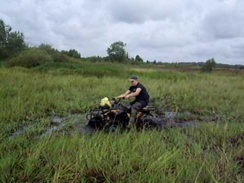 kazuma dingo 150 in mud 2