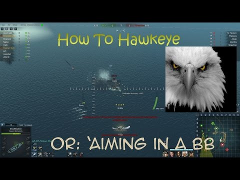 Steel Ocean: 'how to hawkeye' or Aiming Discussion in a BB