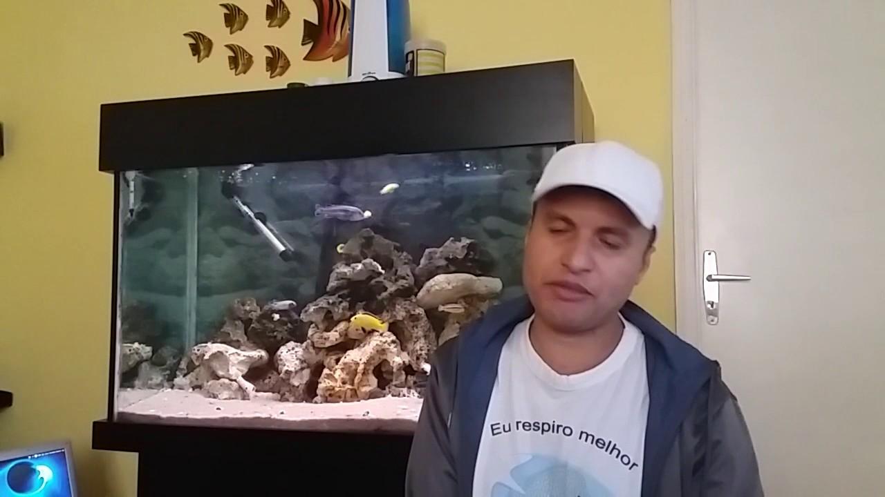 Erros cometidos por mim no aquarismo.