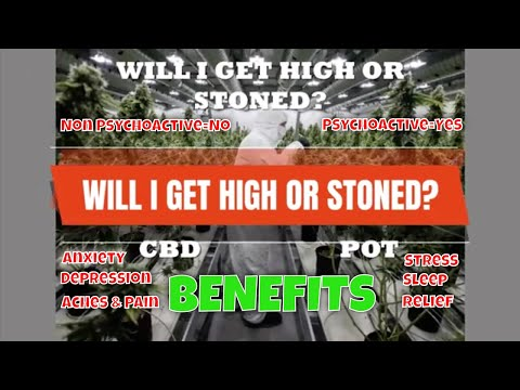 Get CBD Benefits Without Getting High!   Try Natural Remedies with Hemp CBD   CBD Headquarters