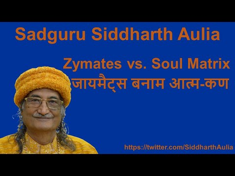 Zymates vs. Soul Matrix (जायमैट्स बनाम आत्म-कण): Osho Siddha