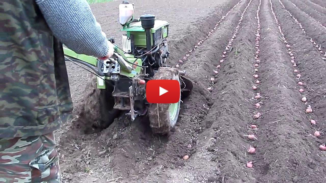 посадка картофеля мотоблоком онлаин видео
