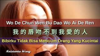 Wo De Chun Wen Bu Dao Wo Ai De Ren - 我的唇吻不到我愛的人 - 紫菱 Zi Ling