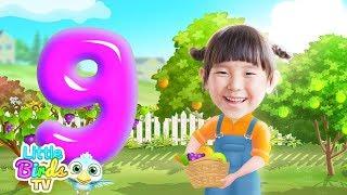 Alphabets | Story of Letter ( g ) | Educational Songs For Kids