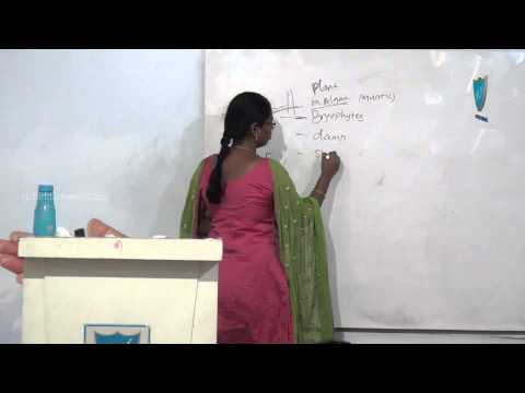 Rich India TNPSC Science By Abinaya