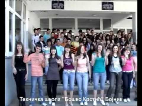 "Tehnička škola ""Boško Krstić"" Bojnik"