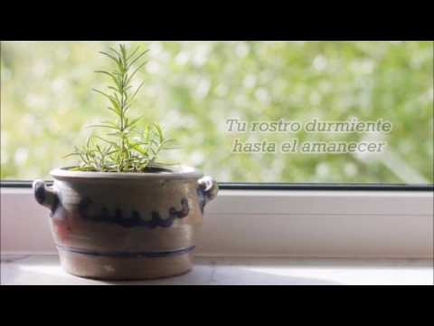 Alex Chu - Flower Pot [Traducida al Español]