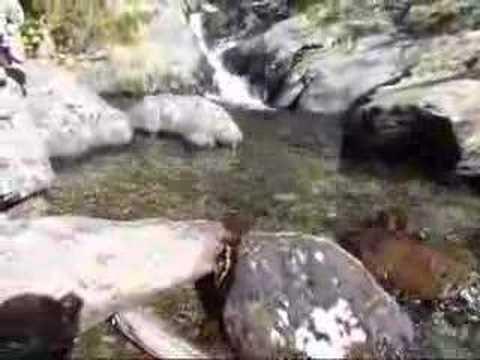 071002.02.Andorra.Coma Pedrosa.wmv