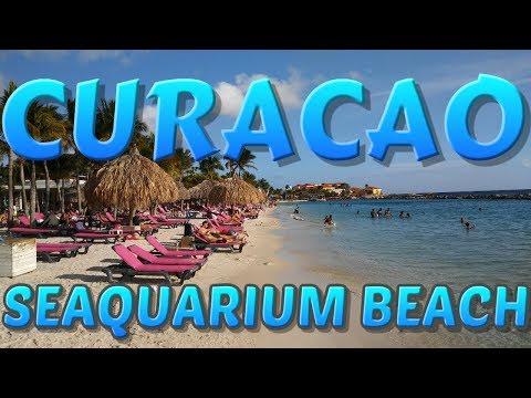 Seaquarium Beach Curacao BEACH TOUR