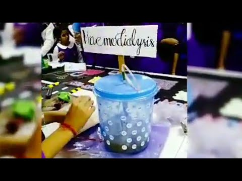 HAEMODIALYSIS| SCIENCE EXHIBITION| CLASS 12 | EASY WORKING MODEL