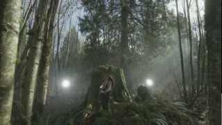 TENILLE - DEAR HEART OFFICIAL MUSIC VIDEO